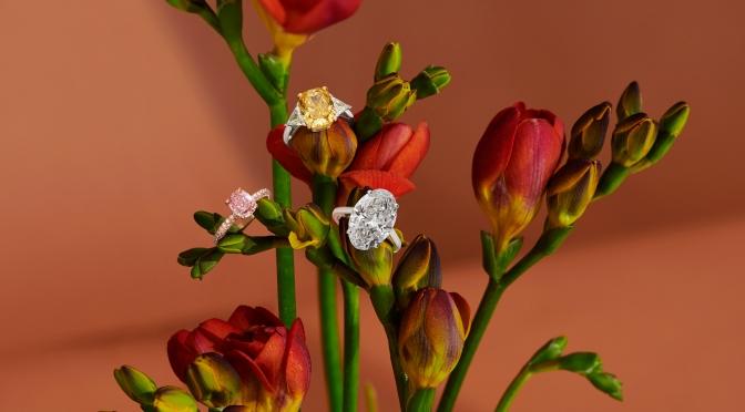 【求婚鑽石超凡選擇】DE BEERS THE 1888 MASTER DIAMONDS系列
